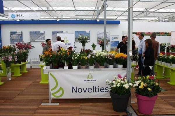 Dutch Lily Days & European Flower Trials 2019